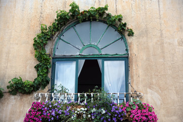 Open window, flowers and ivy