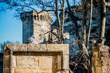 Avignon et ses remparts