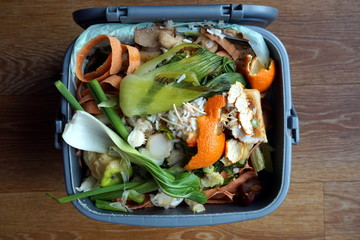 Container of domestic food waste, ready to be collected by the r