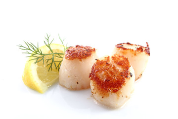 Pan seared scallops with lemon and dill garnish over a white background