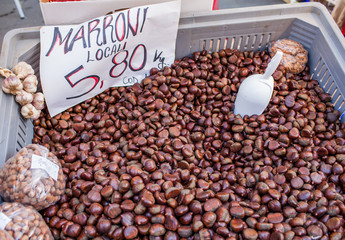 Chestnuts Sale