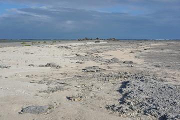 Coastal landscape, sand and rocks with the ocean in background, atoll of Tikehau, Tuamotu archipelago, French Polynesia, south Pacific