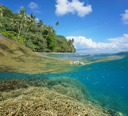 Half and half over and under the water surface, lush tropical coast and coral reef with fish underwater split by waterline, Pacific ocean, French Polynesia, Huahine island