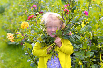 Little blonde girl holding bouquet of dahlias flowers. Child enjoying nature playing in blossoming field. Cute kid picking fresh flowers in the garden in late summer or early autumn.