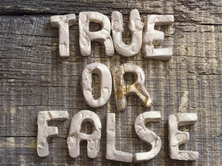True or Lies Concept