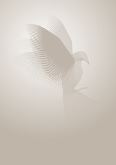 Magic dove made with lines on misty background. Vector illustration