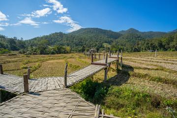 Long Bamboo Bridge in Pai, Thailand