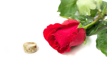 Red rose and Golden ring Diamond head