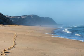 Footprints, beach, sand, Portugal, Europe