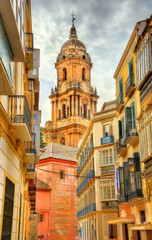 View of Malaga Cathedral, Andalusia, Spain