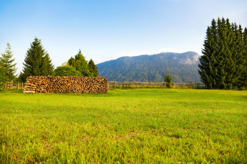 Wall Mural - Alps morning landscape
