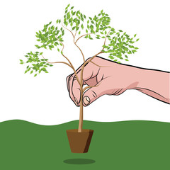 Mans hand planting a tree with leaf
