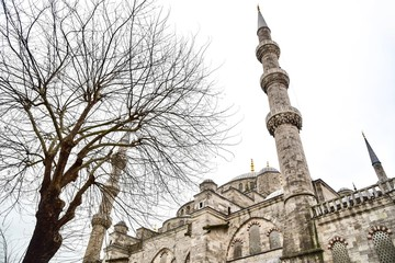 """Sultan Ahmed Mosque, or Commonly Known As The """"Blue Mosque,"""" in Istanbul, Turkey"""