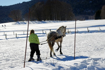 ski-joering