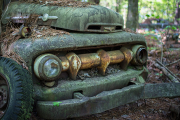 Old moldy truck, abandoned in Georgia