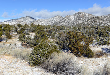 Mountain landscape in New Mexico with freshly fallen snow
