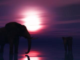 3D elephants in ocean against a sunset sky