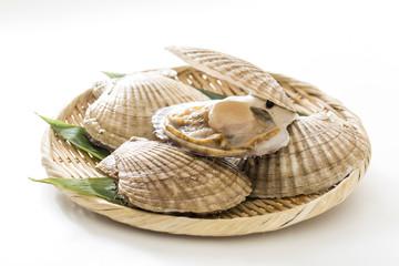 天然ホタテ貝