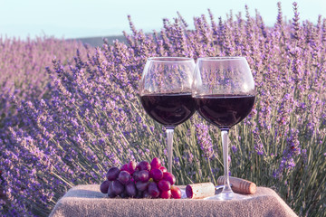 Two glasses of red wine and grapes in lavender field