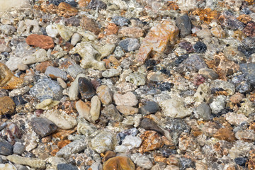 bright multi colored pebbles in sunlight on the seabed