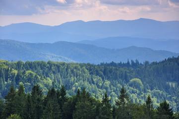 Letni krajobraz w górami