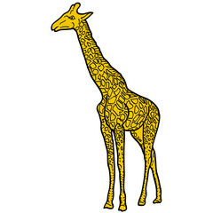 Sketch of high African giraffe on a white background. Vector illustration