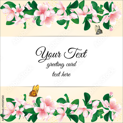 Cherry blossom frame greeting card background with sakura flowers greeting card background with sakura flowers vector template for valentine bookmarktalkfo Choice Image