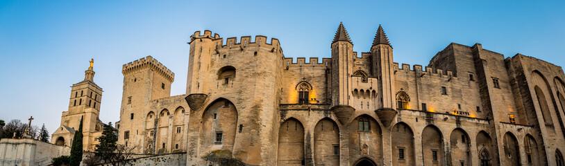 Panorama du Palais des Papes d'Avignon et de la Cathédrale Notre-Dame-des-Doms à la nuit venue