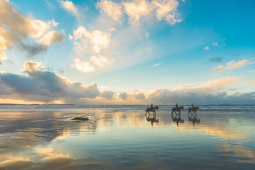 Poster Horseback riding Horses walking on the beach at sunset