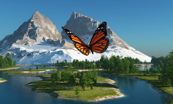 Butterfly and mountains.