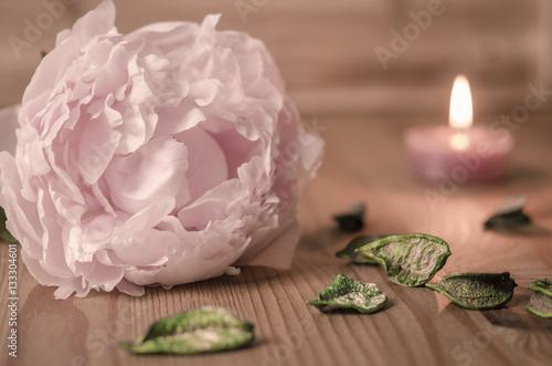 romantische dekoration mit bl te in pink kerzenschein. Black Bedroom Furniture Sets. Home Design Ideas