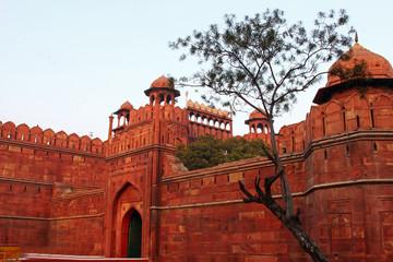 Red Fort, Delhi India