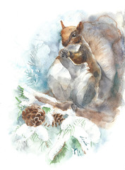 Squirrel watercolor painting illustration isolated on white background greeting card