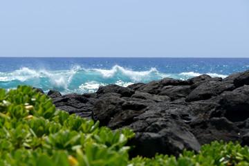Hawaii Beach - 1