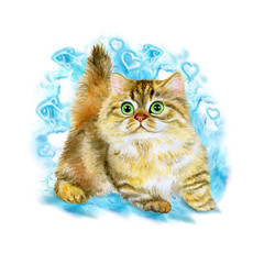 Watercolor portrait of Minuet or napoleon cute kitten isolated on blue background. Hand drawn detailed sweet home pet. Bright colors, realistic look. Greeting card design. Clip art. Add your text