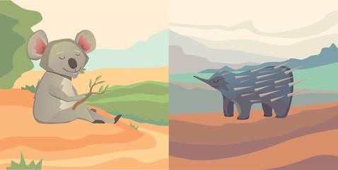 Australian animals vector cartoon koala and echidna isolated