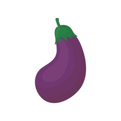 Fresh eggplant vegetable icon vector illustration graphic design