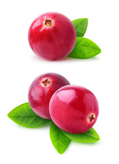 Isolated cranberries. Two images of cranberry fruits with leaves isolated on white background with clipping path