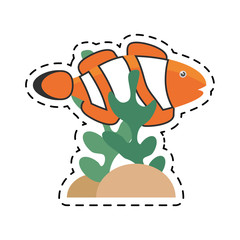 clown fish coral anemone reef line dotted vector illustration eps 10