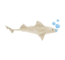 hand drawing shark fish ocean species bubbles vector illustration eps 10