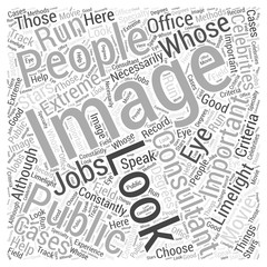 What to Look for in Image Consultants Word Cloud Concept