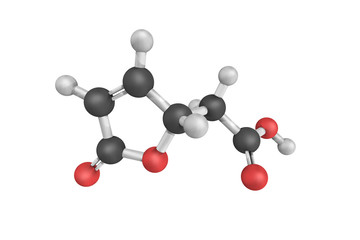 Muconolactone Delta-isomerase, an enzyme that catalyzes the chem