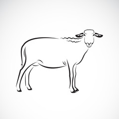 Vector of a sheep on white background. Farm Animal.
