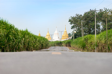 Landscape Buddhist Temple Thailand. pagoda on the road.