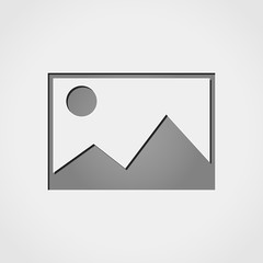 picture grey icon