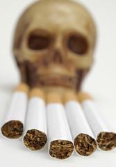 Cigarettes, skull