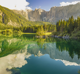 Wall Mural - Laghi di fusine-mountain lake in the Italian Alps