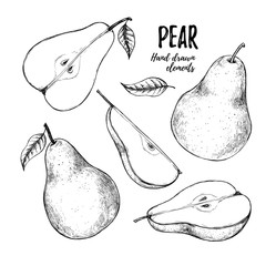 Hand drawn vector illustration - Set of slices pear, pears and leaves. Design elements in sketch style. Perfect for menu, cards, posters, prints, packaging etc