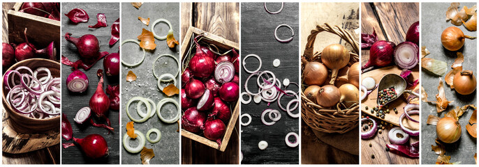 Food collage of onions .
