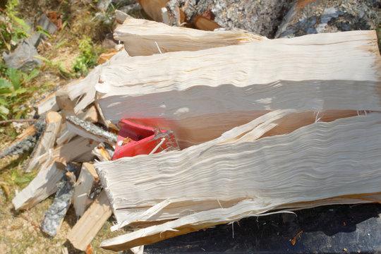 Closeup of a log splitter machine splitting a birch log